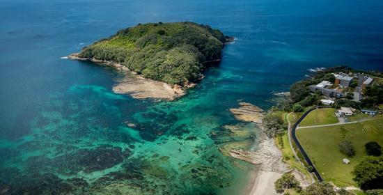 goat-island-marine-discovery.jpg
